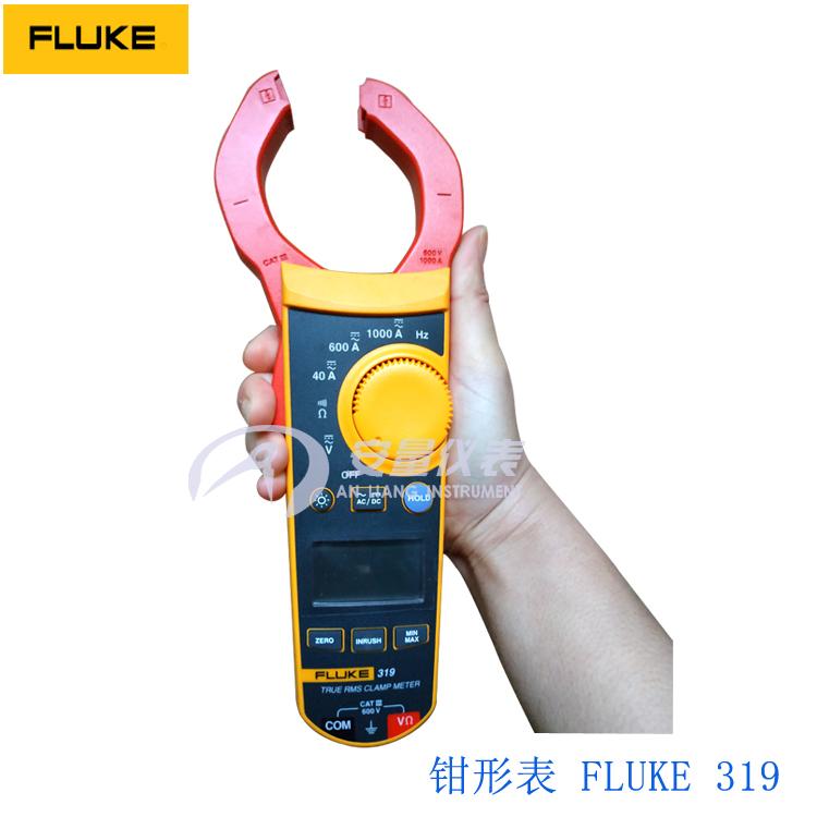 美国福禄克Fluke 317/319 F